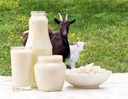 Benefits of Goat Milk For Kids – Do You Know What These Are?